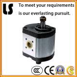 Cast idraulico Iron Gear Oil Pump per Truck e Machinery