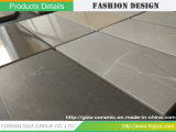 Keramik12*12 matt-Badezimmer-Mosaik-Fliese für Wand und Fußboden (66G13M-2)