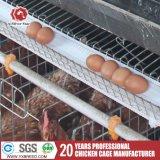 Клетки цыплятины фермы цыпленка серебряной звезды автоматические