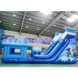 Corrediça de água inflável gigante para crianças/corrediça Bouncy enorme para o arrendamento