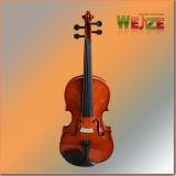 Livello di entrata marrone-rosso tutto il violino di Linder