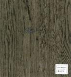 Constructeur de papier des graines de bois de chine