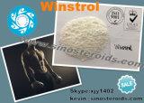 Pó cru esteróide anabólico oral de Stanozolol Winstrol do Bodybuilding