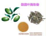 オリーブ色の葉のエキス/15% 30%のポリフェノール