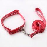 Collier en nylon d'animal familier de crabot d'animal familier de laisse faite sur commande d'accessoires (HJ7120)
