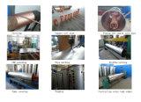 200L-500L pressurizou o calefator de água de cobre da energia solar da bobina (ZHIZHUN)