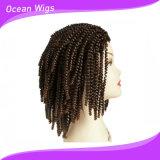 Parrucca sintetica Braided dei capelli dei capelli ricci