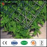 Стена зеленых заводов китайского PE изготовления профессионального искусственная