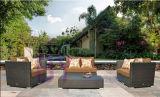 Im amerikanischen Stil PET Rattan-im Freien Innengaststätte-Sofa-Set