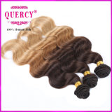 Fonte Top Quality Grade 8A Three Tone Color Omber Hair Virgin Hair brasileiro Virgin brasileiro Hair