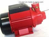 Italien-Entwurfs-Messingantreiber-Wasser-Pumpe Qb60 Qb70 Qb80