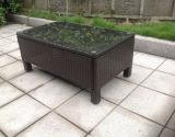 Мебель сада ротанга софы напольной мебели Wicker (GN-9078S)