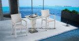 Silla y vector al aire libre amontonables de los muebles del jardín fijados usar el lugar del hotel y del balcón (Yta098&Ytd144-2
