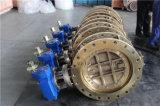 Het dubbel voorzag de Zonderlinge Vleugelklep van al-Brozne C95200 Met Ce ISO van een flens