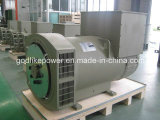 有名な工場400kw/500kVAブラシレス発電機の交流発電機(JDG354C)