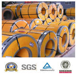 Hersteller-Edelstahl-Ring (304/310S/316/316L/321/904L) für Aufbau