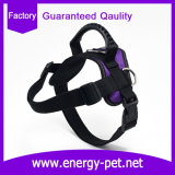 Nylonhundeweste-Haustier-Kleidung, Haustier-Verdrahtung