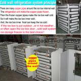Lehnender Tür-Eis-Verkaufsberater-Kühlraum in Amerika