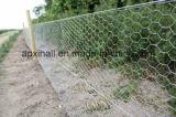 Rete metallica/maglia esagonali per protezione di pietra
