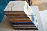 Mattonelle piene di vendita calde del marmo del corpo di disegno