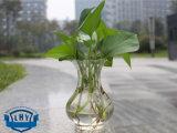 Прозрачным опарник введенный Flowerpot Hydroponic