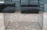 Rete metallica nera del pollo del pollame di Sailin
