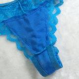 مصنع [أم] صنع وفقا لطلب الزّبون تصميم نساء ملبس داخليّ [ثونغ] مثيرة