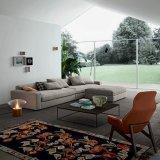 Insiemi modulari d'angolo del sofà in salone moderno (F629-3-1)