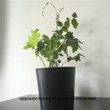 Flowerpot di plastica rotondo per la decorazione del giardino (HP-02)