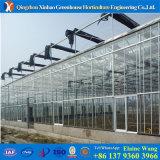 Парник Muti-Пяди стеклянной крышки с Hydroponic системами для Aquaponics