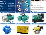 電力源として照明に使用するか、または緊急時7.5kw Stcの交流発電機の三相発電機