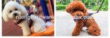 Ganchos de leva de moda de la venta al por mayor 2017 nuevos y baratos del broche de presión del resorte de la seguridad del laminado del níquel o de cromo de la aleación del cinc con el modelo abierto Dp-5037z del gancho de leva del eslabón giratorio para el bolso o perro o animal doméstico