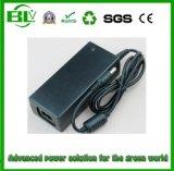 Poissons argentés d'adaptateur intelligent d'AC/DC pour la batterie au sujet du chargeur de la batterie 25.2V2a