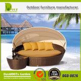 Daybed мебели сада Wilson и Fisher напольный с сенью