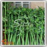 Arbre de bambou artificiel bon marché de haute qualité