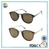 Glaces de Sun pliant les lunettes de soleil neuves à la mode de Slapsee pour la promotion