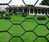 Плетение провода PVC высокого качества Coated шестиугольное для загородки