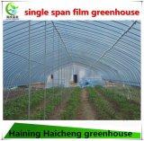 농업 야채에 의하여 이용되는 광고 방송 필름 온실