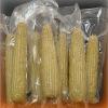 Film en plastique d'emballage de nourriture de barrière élevée de PA/EVOH/PE