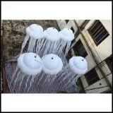 Facendo pubblicità alle meduse gonfiabili di Attactive LED di fantasia da vendere