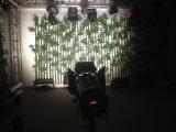 Luces profesionales del punto del perfil de la iluminación de etapa del equipo del Karaoke