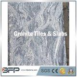 La madera del material de construcción tiene gusto del azulejo de suelo de la piedra del granito de las venas (800*800m m)