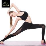 Signora all'ingrosso stabilita Sportswear di yoga sexy delle donne