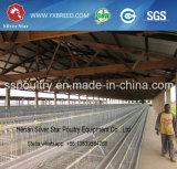 Gaiola automática da galinha da colocação de ovo do projeto para a exploração avícola de África