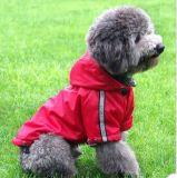 محبوب يلبّي [كلدبرووف] مسيكة كلب ممطر
