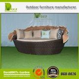 Daybed esterno della mobilia del giardino del Fisher e del Wilson con il baldacchino