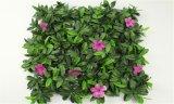 Заводы высокого качества искусственние и цветки зеленой стены Gu20170213143331