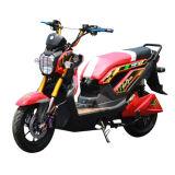 Hot Sale 1200W Brushless Motor Electric Dirt Motorbike (EM-007)