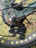 500W電気自転車4.0インチのKendaのタイヤのEバイク