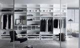 White Matt Lacquer Bedroom Closet com porta de vidro